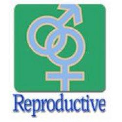 Фертильность и репродукция